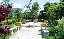 グレースメイト ガーデン