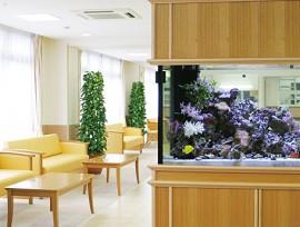 未来江戸川 談話室